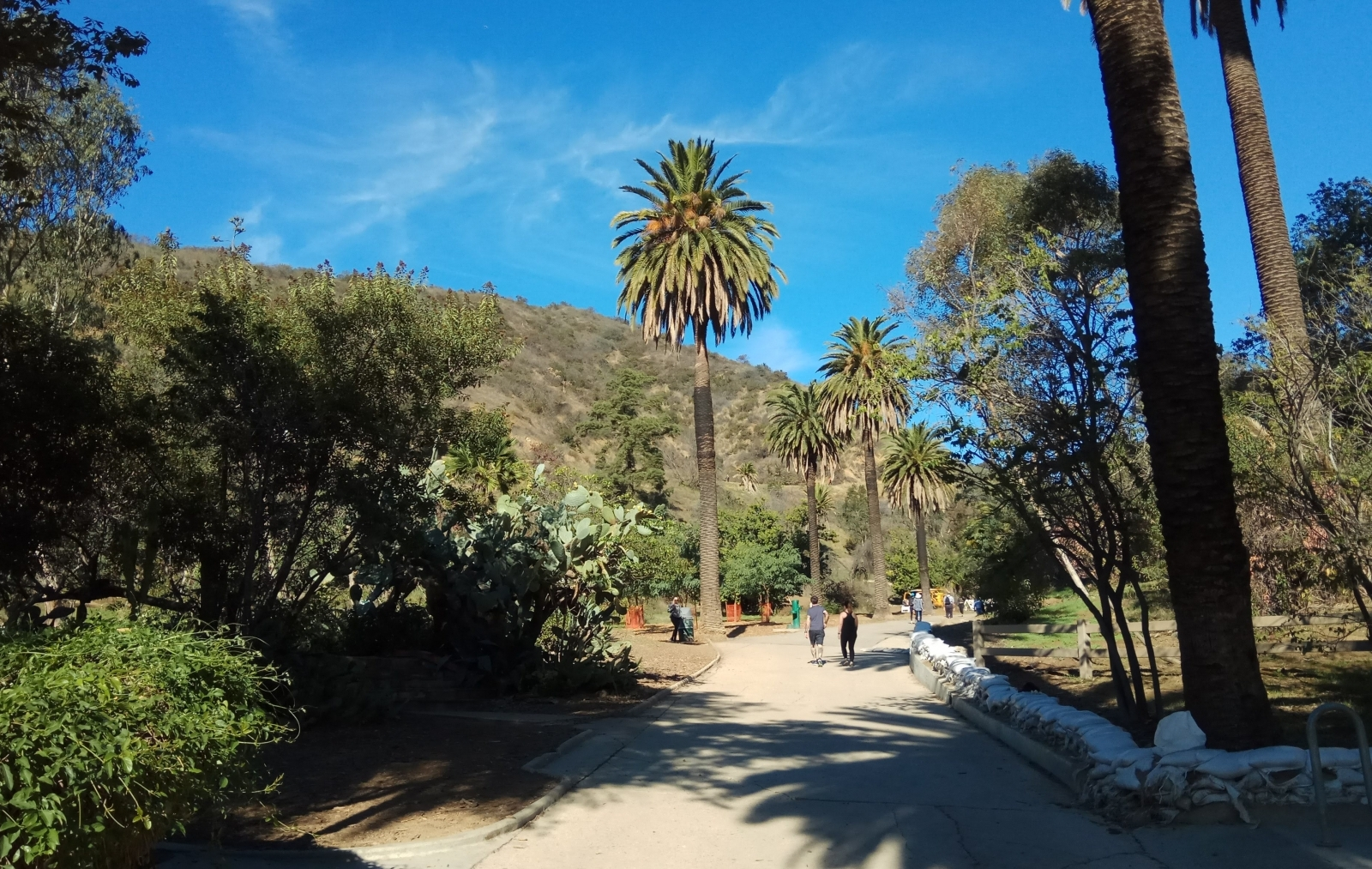 Дорога к парку «Раньон Каньон»